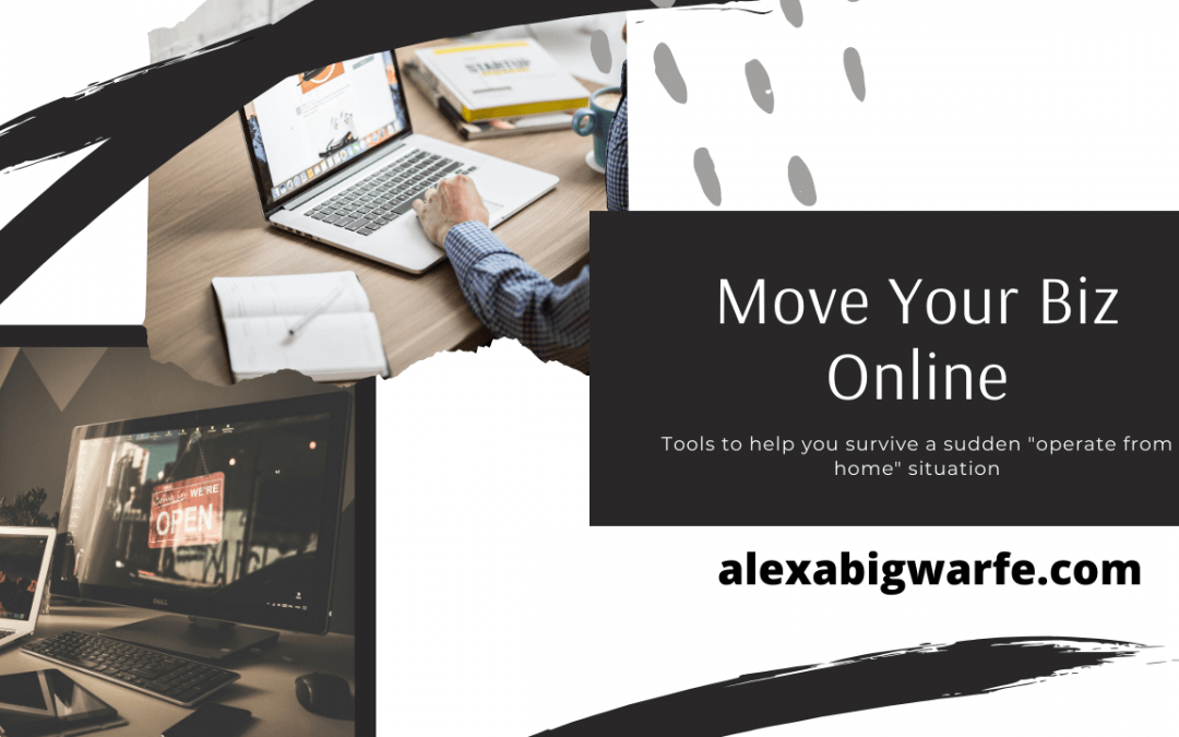 Moving biz operations online and need some tips?